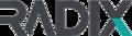 radixsolutions.co.za logo
