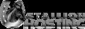 stallionhosting.com logo!
