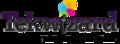tekwizard.net logo