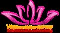 vietnameserver.com logo!