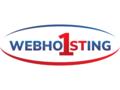 webhosting1st.com logo!
