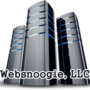 websnoogie.com logo!