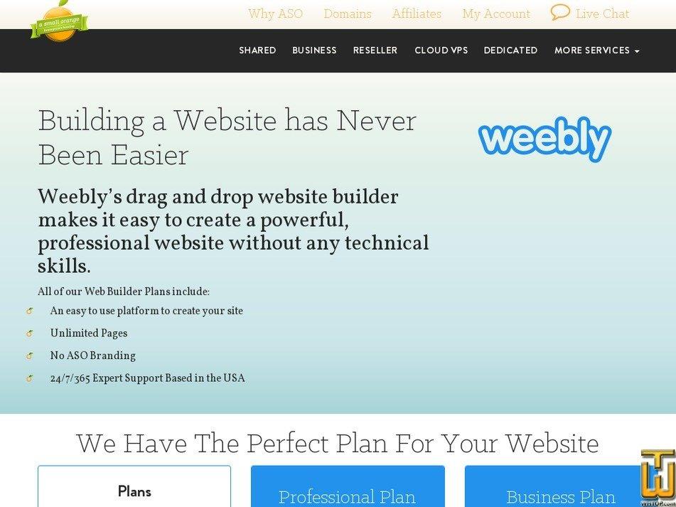 Screenshot of Professional from asmallorange.com