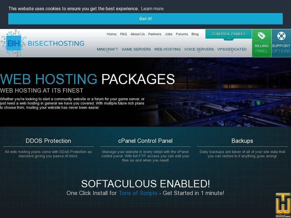Screenshot of Web Package 1 from bisecthosting.com