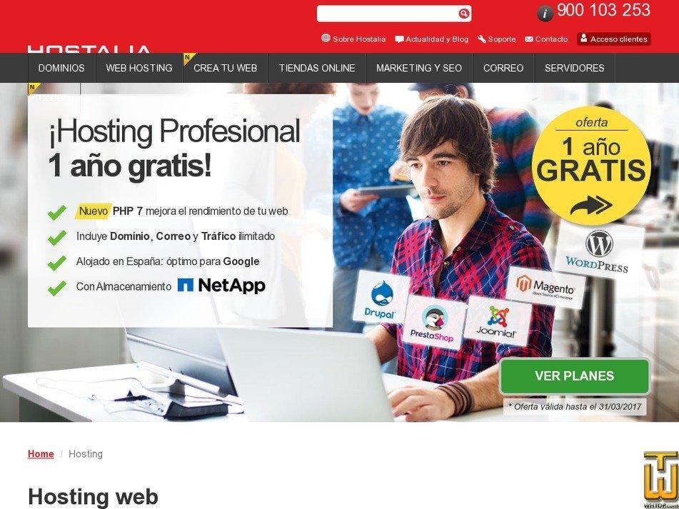 Screenshot of Basic from hostalia.com