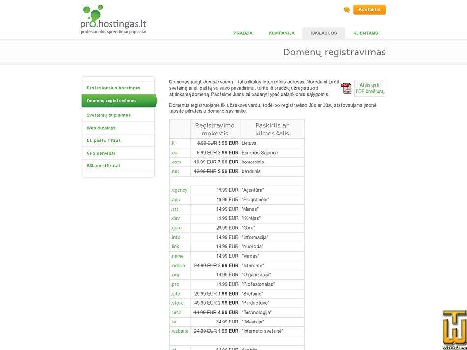 screenshot of .com from hostingas.lt