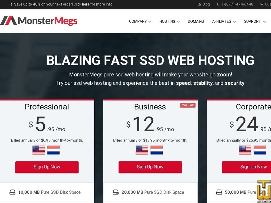 Screenshot of Professional from monstermegs.com