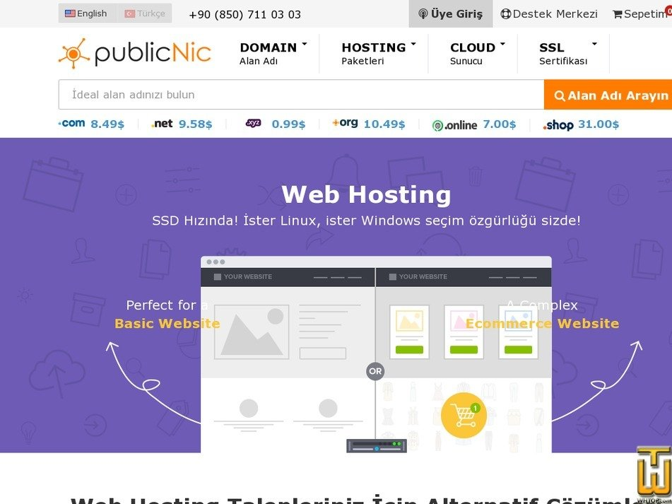 Screenshot of Basic Hosting from publicnic.com